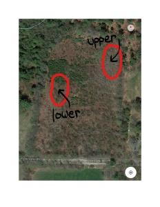 Soilsamples_map